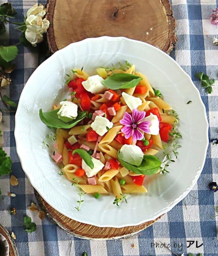 pastafredda w1