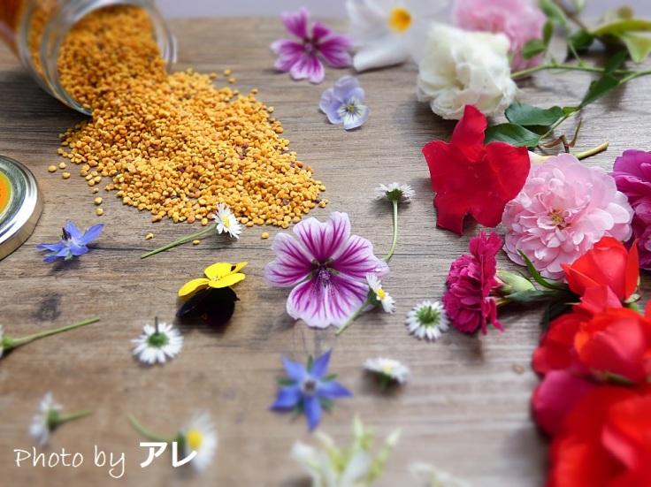polline2